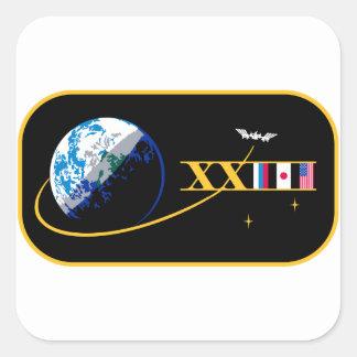 Equipos del ISS:  Expedición 23 Pegatina Cuadrada