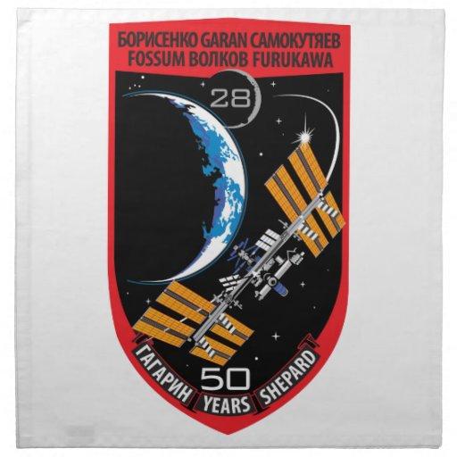 Equipos del ISS:  Expedición 28 Servilletas Imprimidas