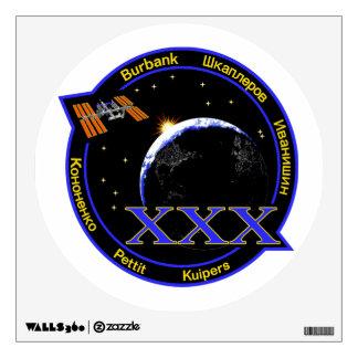 Equipos del ISS:  Expedición 30 Vinilo