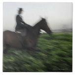 Equitación en campo verde. Mujer a caballo Azulejo