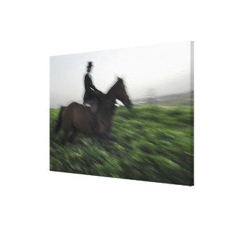 Equitación en campo verde. Mujer a caballo Lienzo Envuelto Para Galerias