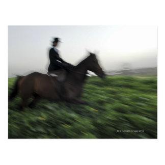 Equitación en campo verde. Mujer a caballo Postal