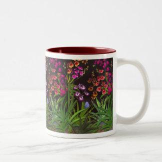Equitant Oncidium Tolumnia Orchids Mug