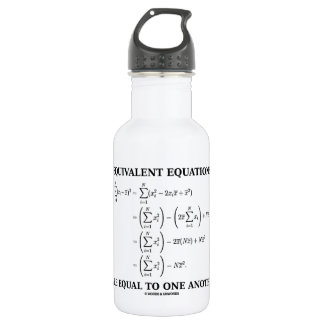 Equivalent Equations Are Equal To One Another Stainless Steel Water Bottle
