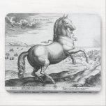 Equus Hispanus Alfombrillas De Raton