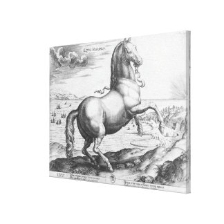 Equus Hispanus Impresión En Lienzo