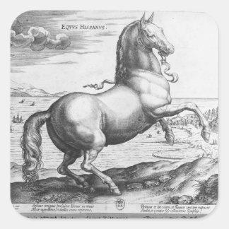 Equus Hispanus Calcomanías Cuadradas