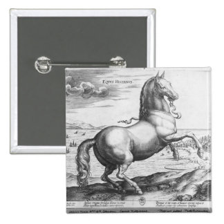 Equus Hispanus Pin