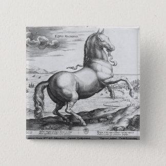 Equus Hispanus Pinback Button