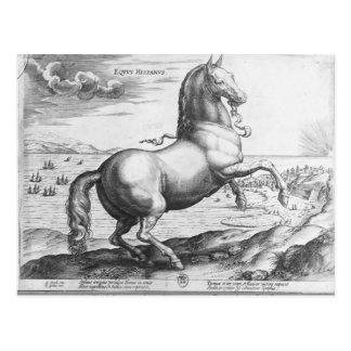 Equus Hispanus Postcard