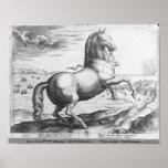 Equus Hispanus Póster
