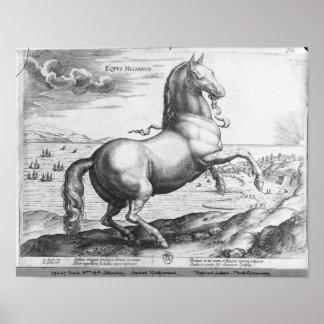 Equus Hispanus Poster