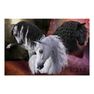 Equus Horse Poster, Matte/Value Paper, see options Poster