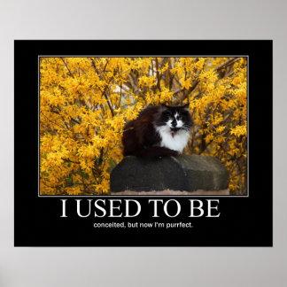 Era. Ilustraciones del gato divertidas Póster