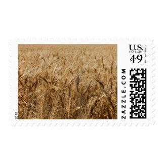 Erick, Oklahoma Route 66 Stamp