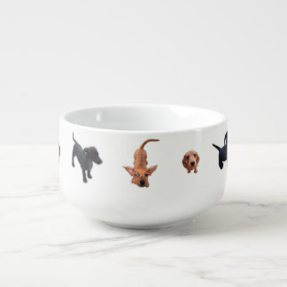 Eridox red chocolate dachshund dapple puppies soup mug