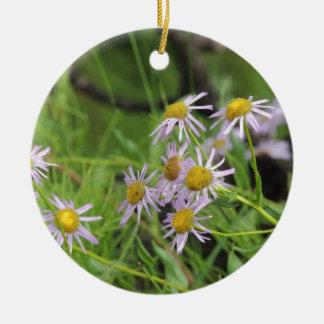 Erigeron del wildflower de la margarita de adorno redondo de cerámica