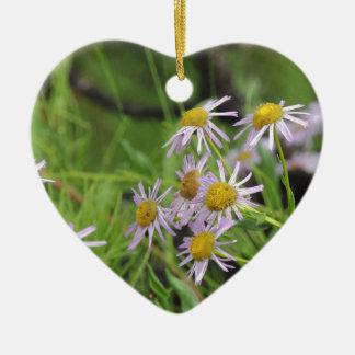 Erigeron del wildflower de la margarita de adorno de cerámica en forma de corazón