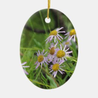 Erigeron del wildflower de la margarita de adorno ovalado de cerámica