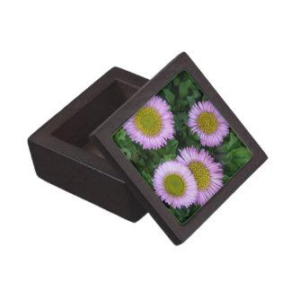 Erigeron Flower Gift Box