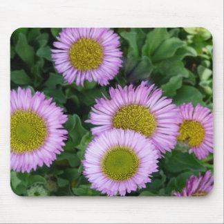 Erigeron Flower Mousepad
