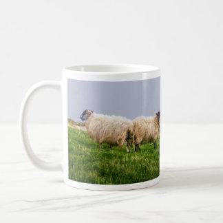 Erin Forever Mug-Field Sheep in Dingle, Ireland Classic White Coffee Mug