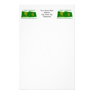 Erin Go Bragh and Leinster Province Flags Stationery