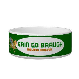 Erin Go Braugh Celtic Griffin Cat Bowl