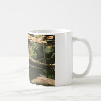 Erithacus rubecula coffee mug