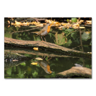 Erithacus rubecula table cards