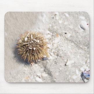 Erizo de mar en la resaca mousepad