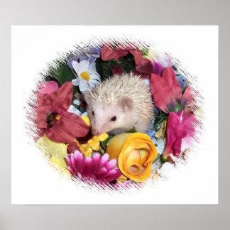 Erizo precioso enrrollado en flores póster