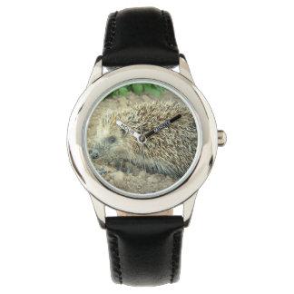Erizo Reloj De Mano