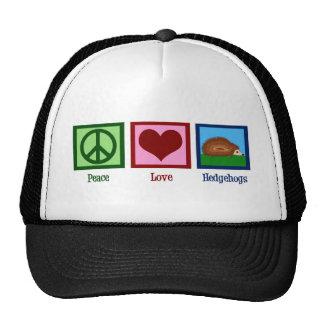 Erizos del amor de la paz gorro