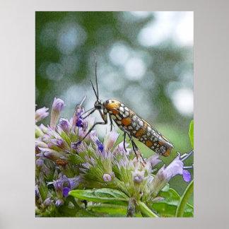 Ermine Moth on Agastache Print
