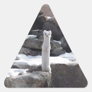Ermine On Snowy Rocks Triangle Stickers