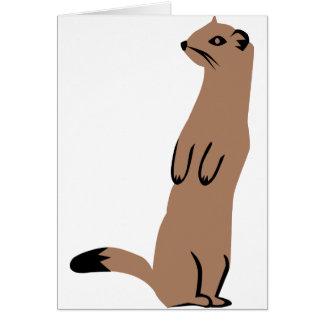 Ermine - Stoat - Weasel Card