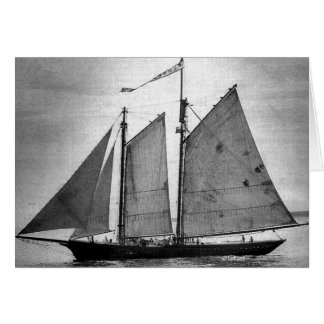 Ernestina b/w--thank you greeting cards