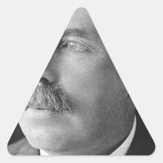 ernestrutherford triangle sticker