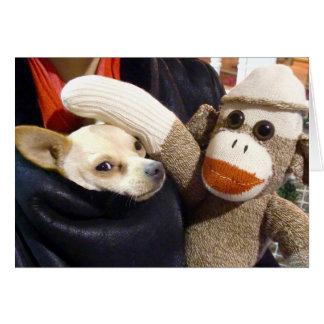 Ernie el mono y la chihuahua del calcetín carda tarjeta pequeña