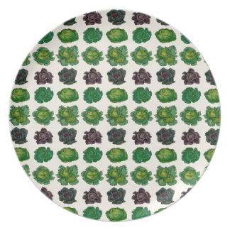 Ernst Benary's Cabbage Varieties Plate