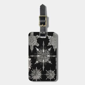 Ernst Haeckel | Acanthophracta Luggage Tag