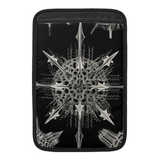 Ernst Haeckel | Acanthophracta Sleeve For MacBook Air