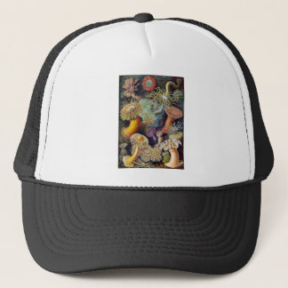 Ernst Haeckel Actiniae Trucker Hat