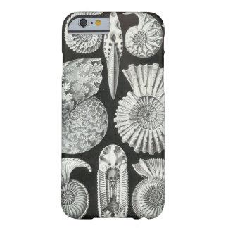 Ernst Haeckel - Ammonitida Funda De iPhone 6 Barely There