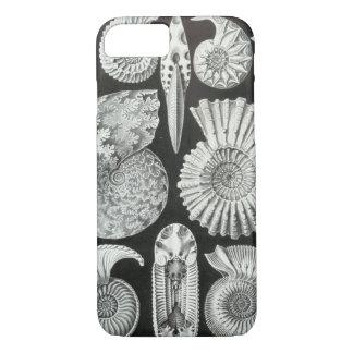Ernst Haeckel - Ammonitida iPhone 8/7 Case