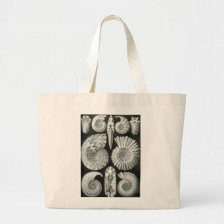Ernst Haeckel - Ammonitida Large Tote Bag