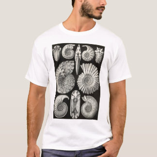 Ernst Haeckel - Ammonitida T-Shirt