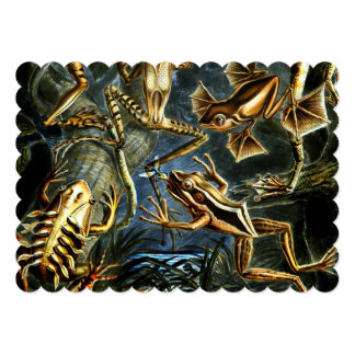 Ernst Haeckel Amphibians Frogs and Lizards Card