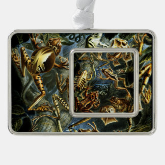 Ernst Haeckel Amphibians Frogs and Lizards Silver Plated Framed Ornament